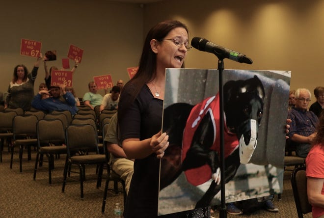 Theresa Dennis of Fort Walton Beach voices her opposition to greyhound racing during the Constitution Revision Commission's public hearing Tuesday, Feb. 27, 2018, at the University of West Florida.