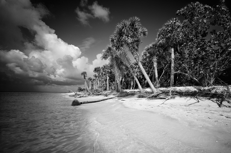 636555227188899483-ClydeButcherArt2 Authentic Florida: Sarasota photographer Clyde Butcher defines restorative power of nature