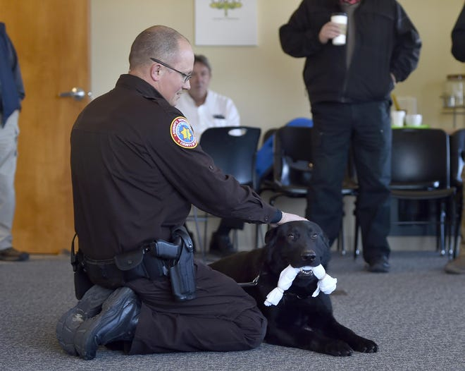 "Matt Tassoul of the Door County Sheriff's Department demonstrates Odinn's ability to find a hidden drug-scented rolled towel in a demonstration during ""Coffee with a Cop & K9'' on Friday morning at the Glas Coffeehouse, 67 E. Maple St., Sturgeon Bay."