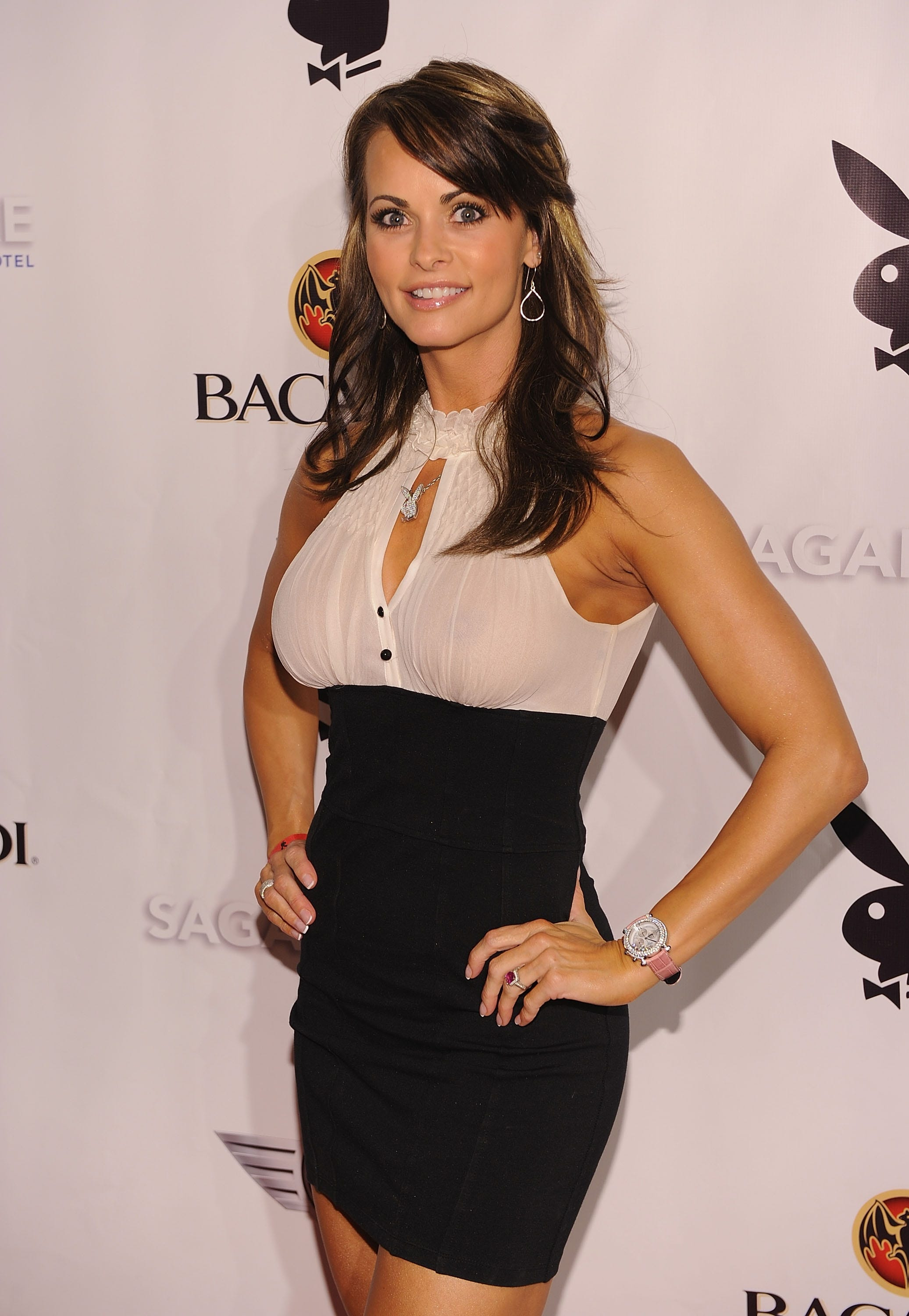 Karen McDougal claims she had an affair with Donald Trump for several  months while he was married to Melania Trump.