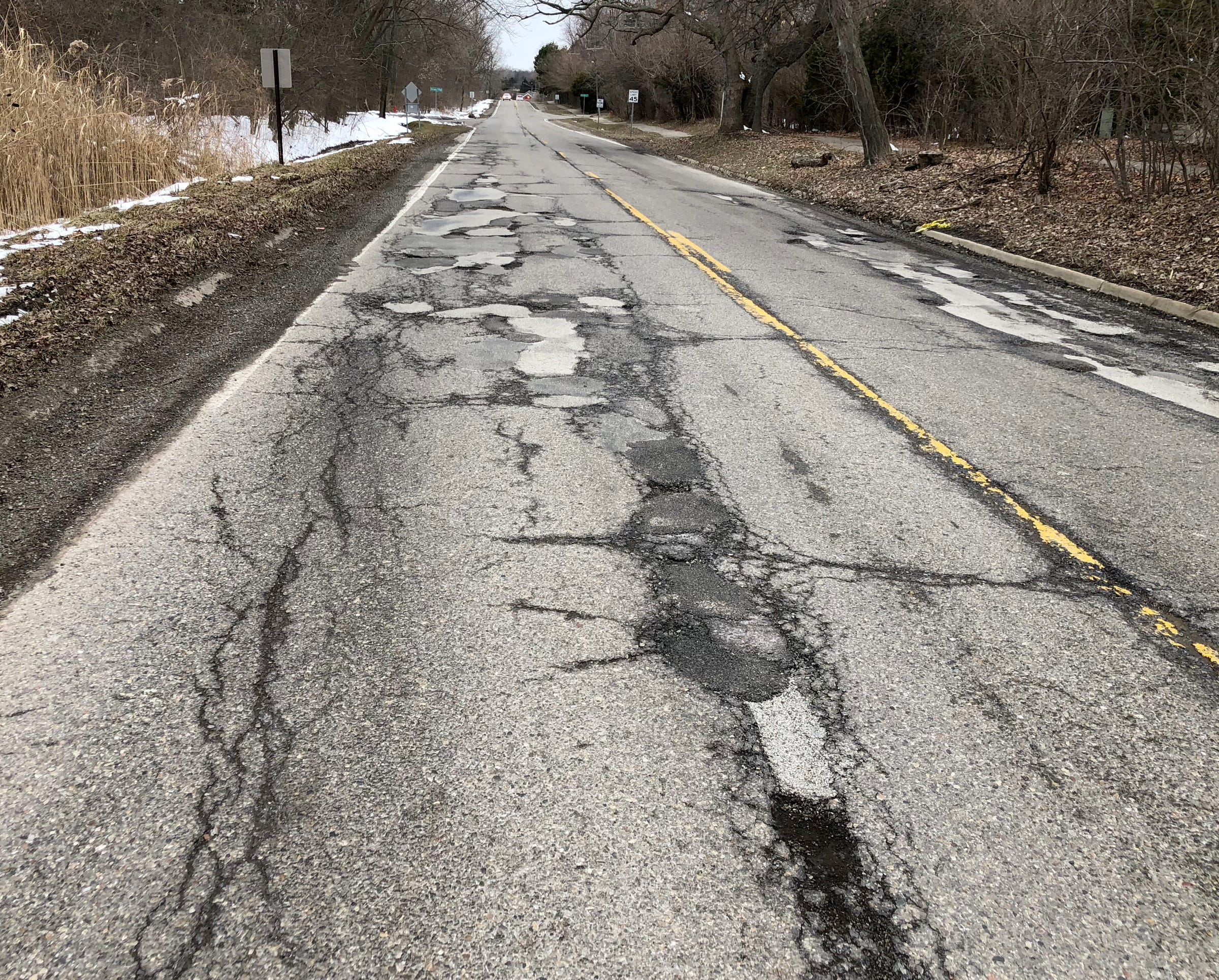 Skip the bowl, Michigan college student eats cereal out of a pothole   Detroit Free Press