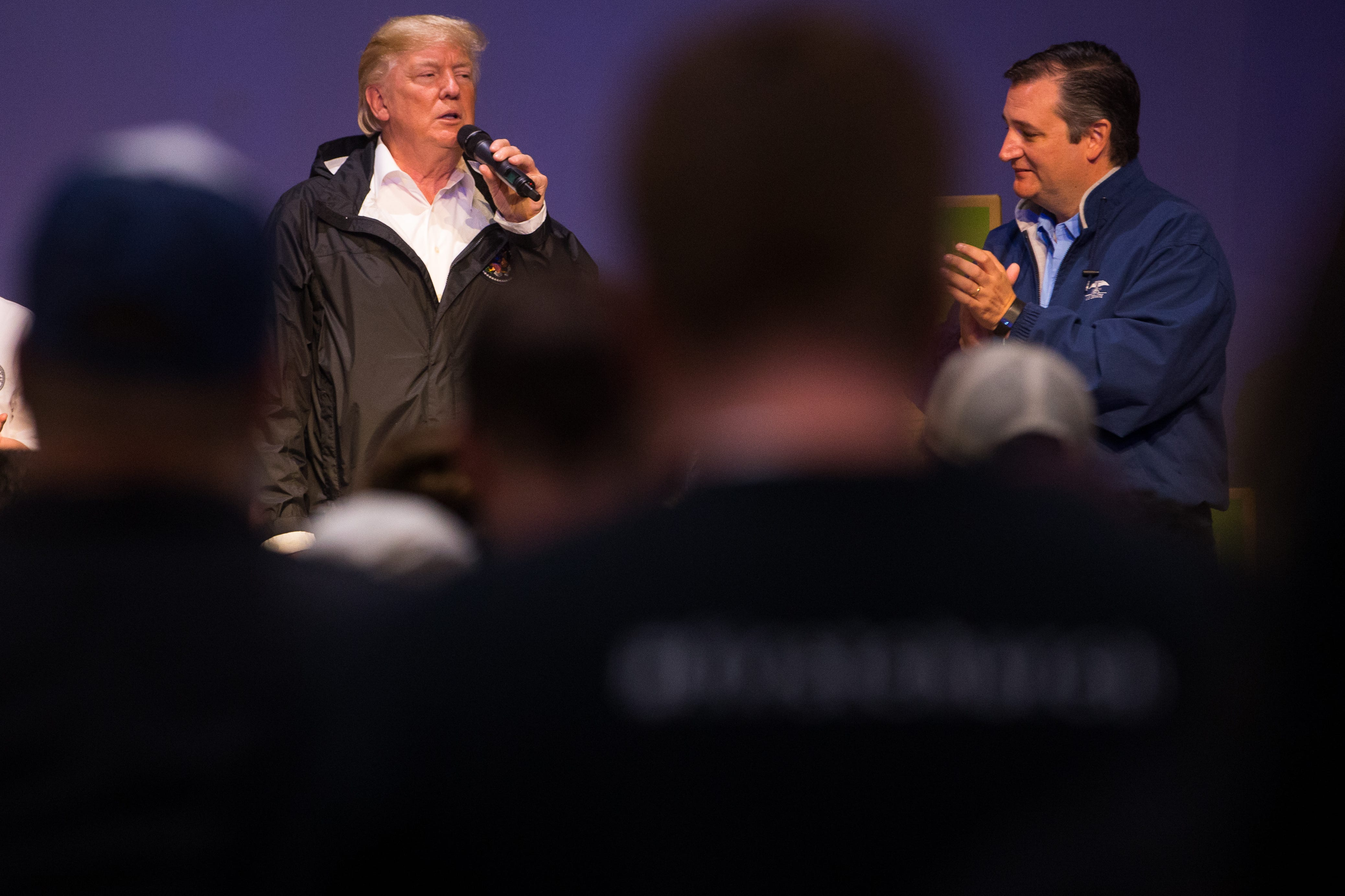 Ted Cruz lauds Donald Trump as 'flash-bang grenade,' two years after angry primary fight