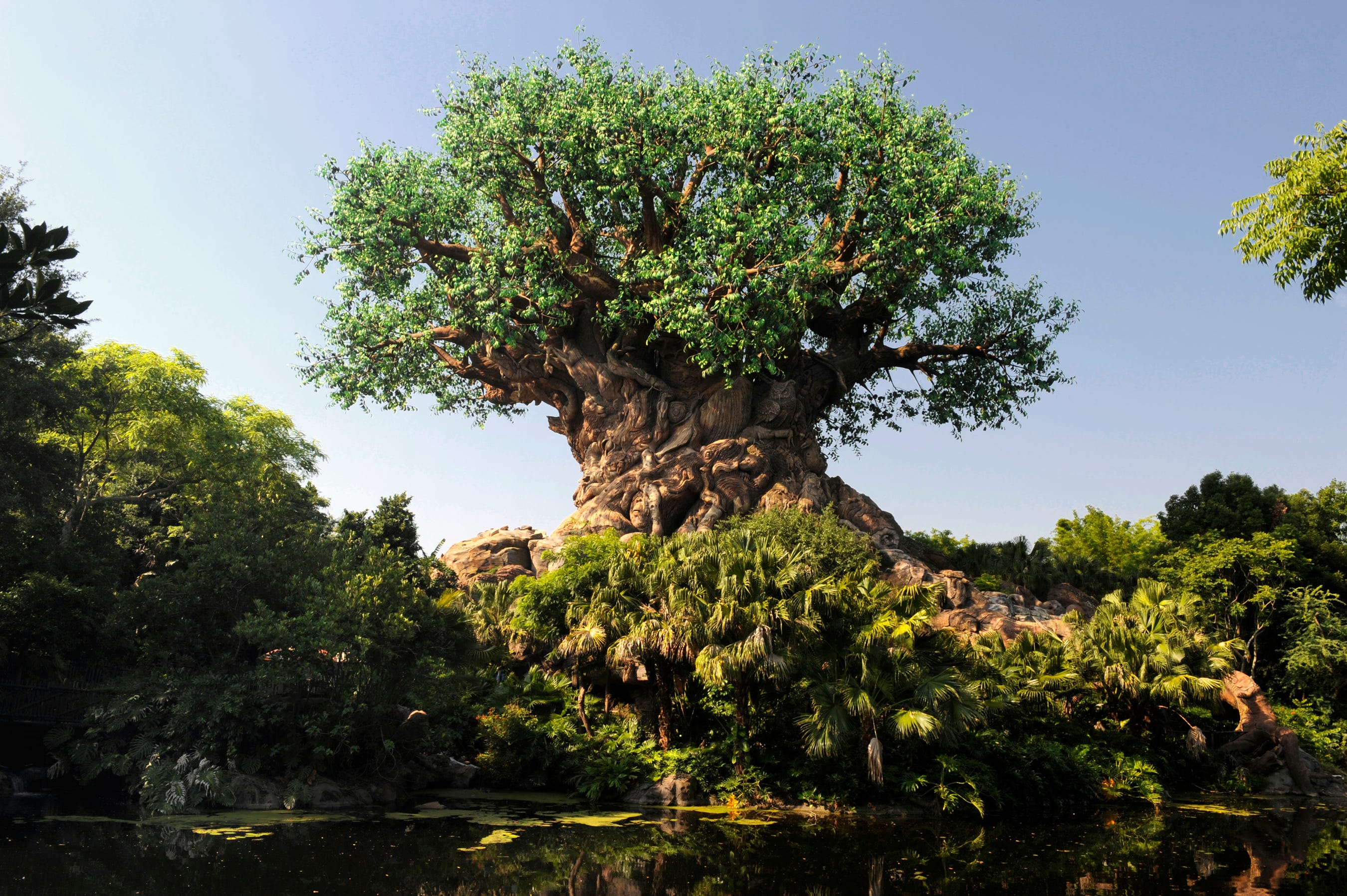 Disneyland Paris officially gets rid of plastic straws; US and other Disney parks are next