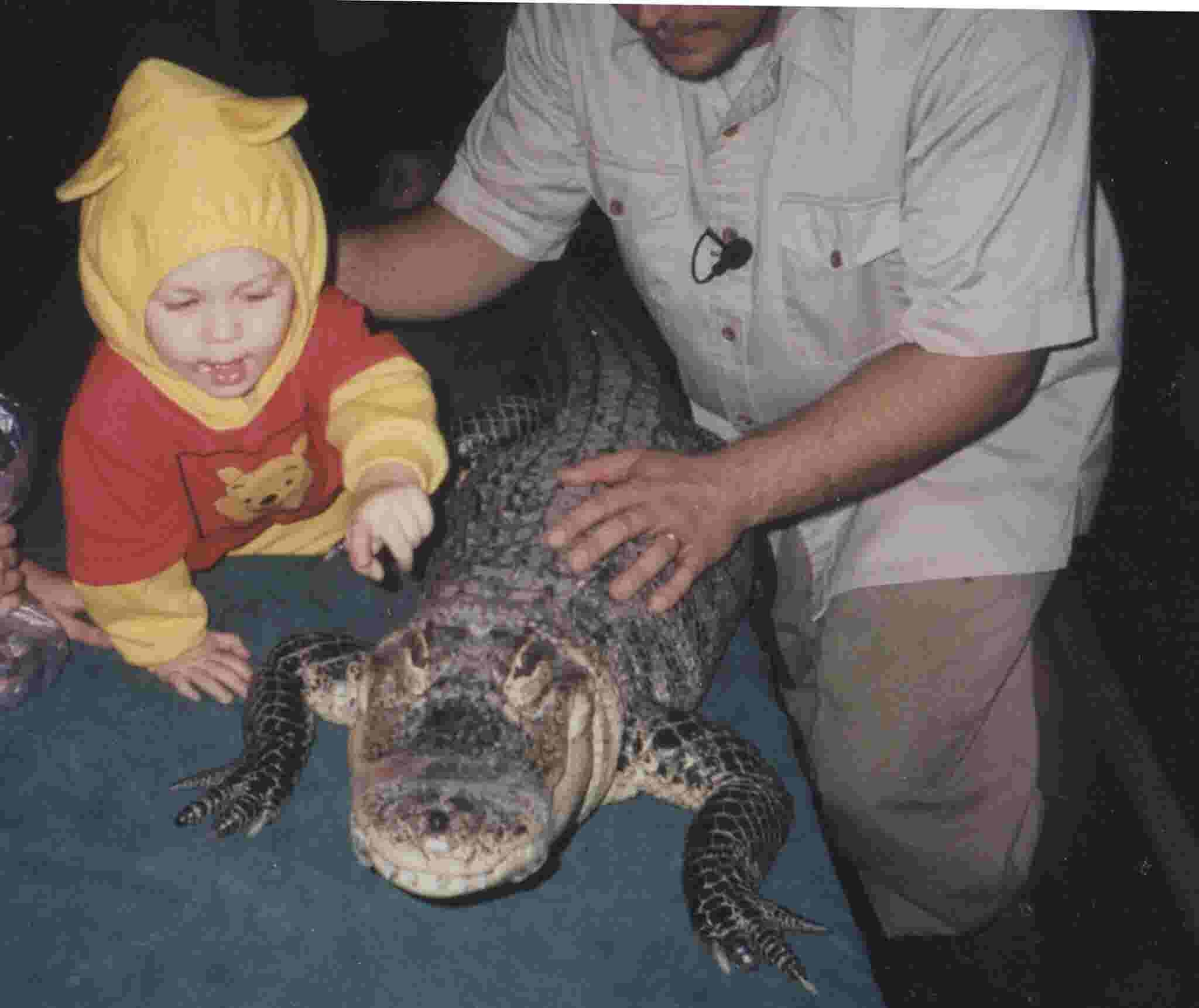 Photos show girl with gators in the living room and swimming pool gator crusader shows off photos of his daughter with alligators in the living room pool freerunsca Image collections