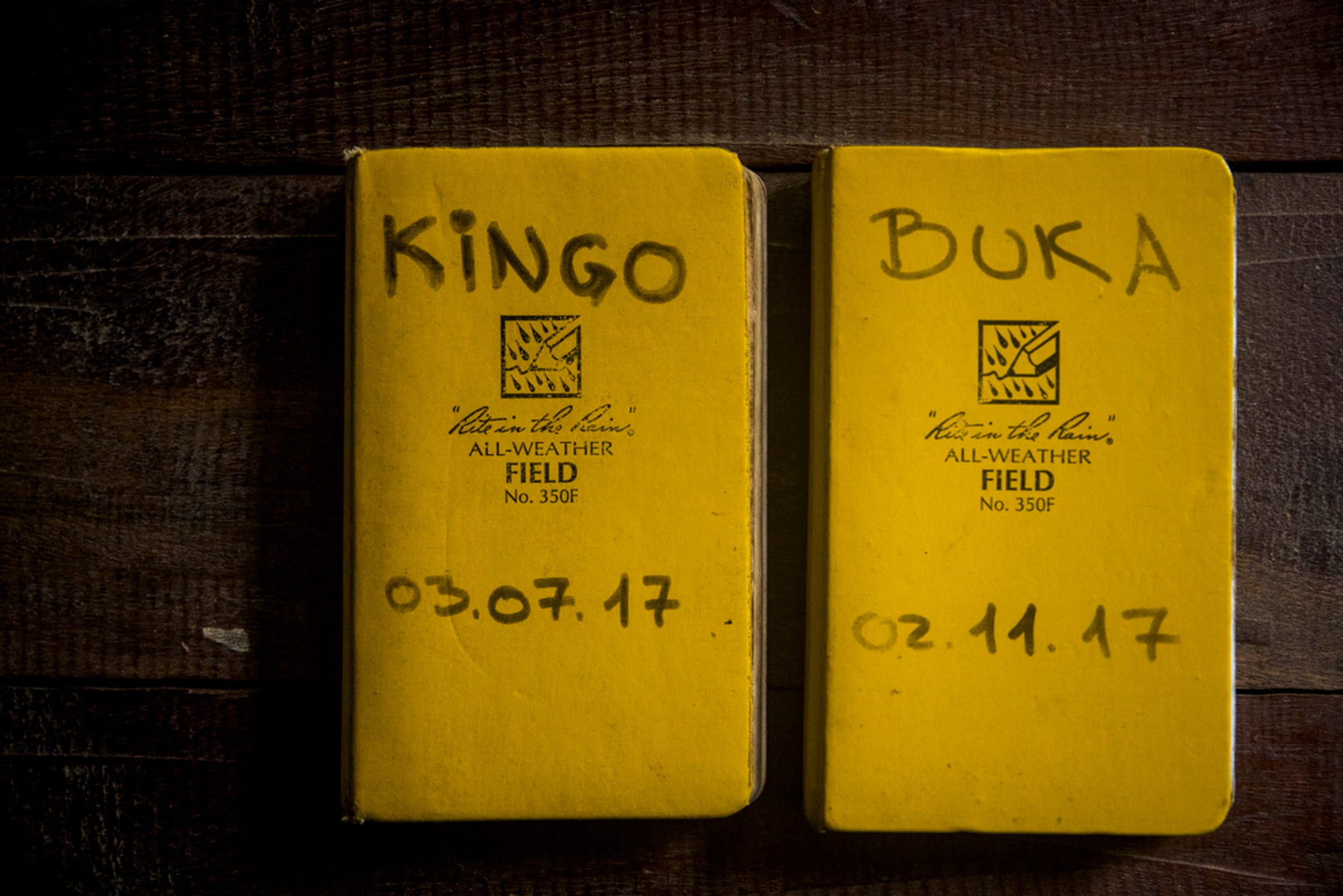 Researchers and trackers log their observations of Kingo and Buka's group in these notebooks.