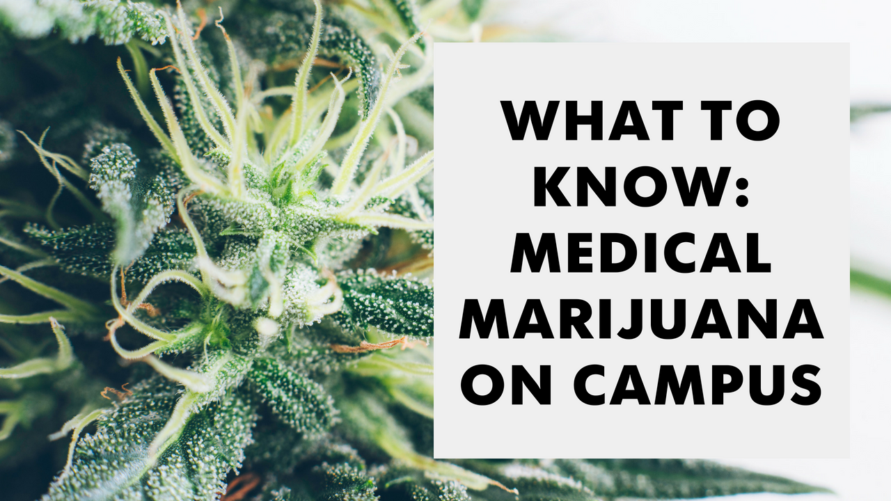 What to know about medical marijuana on Arizona college campuses
