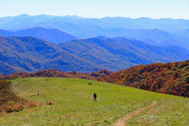 The Carolina Mountain Club will host a National Trails Day volunteer workday and hike June 2 at Max Patch.