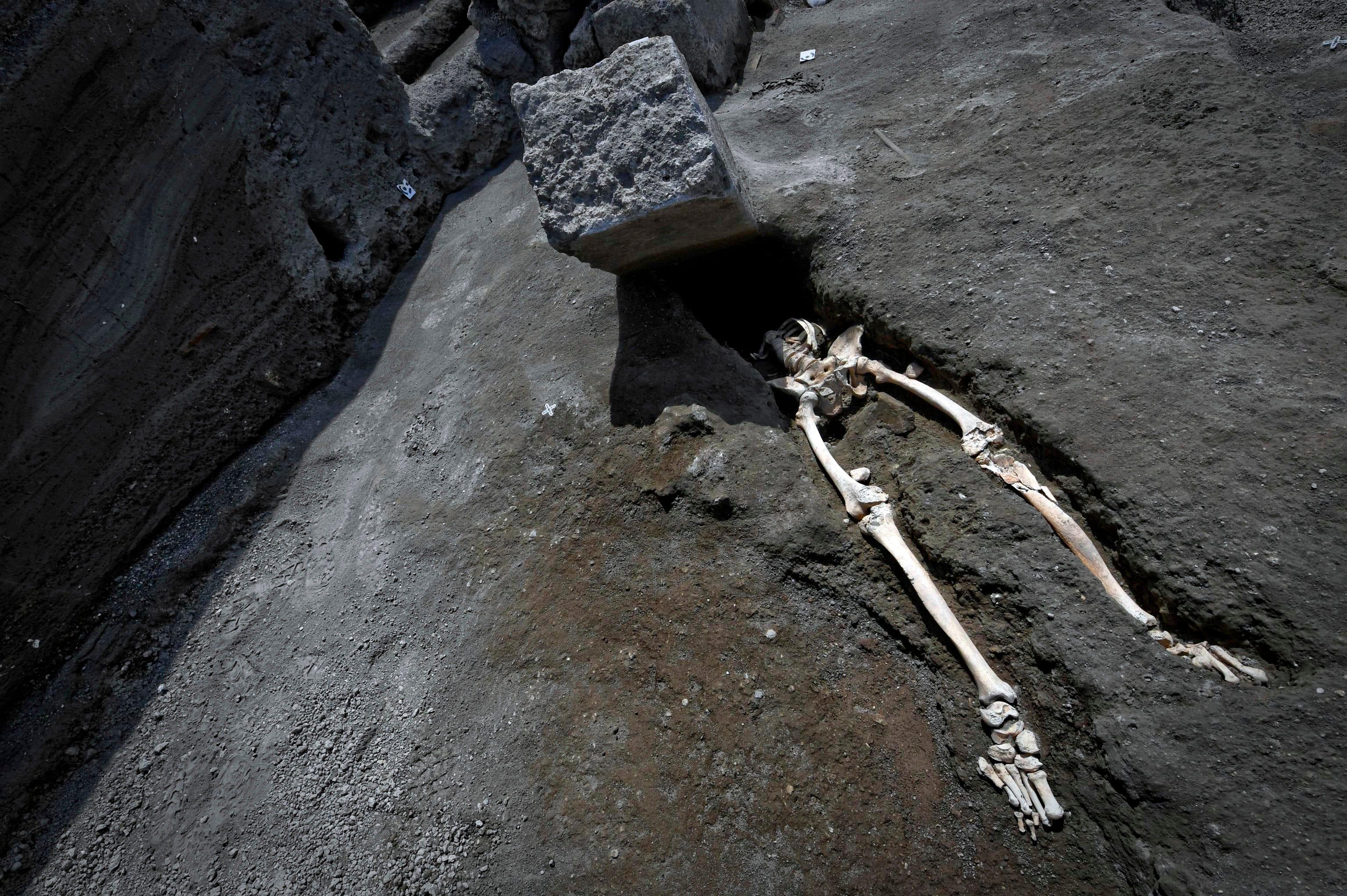 AP Italy Pompeii Skeleton