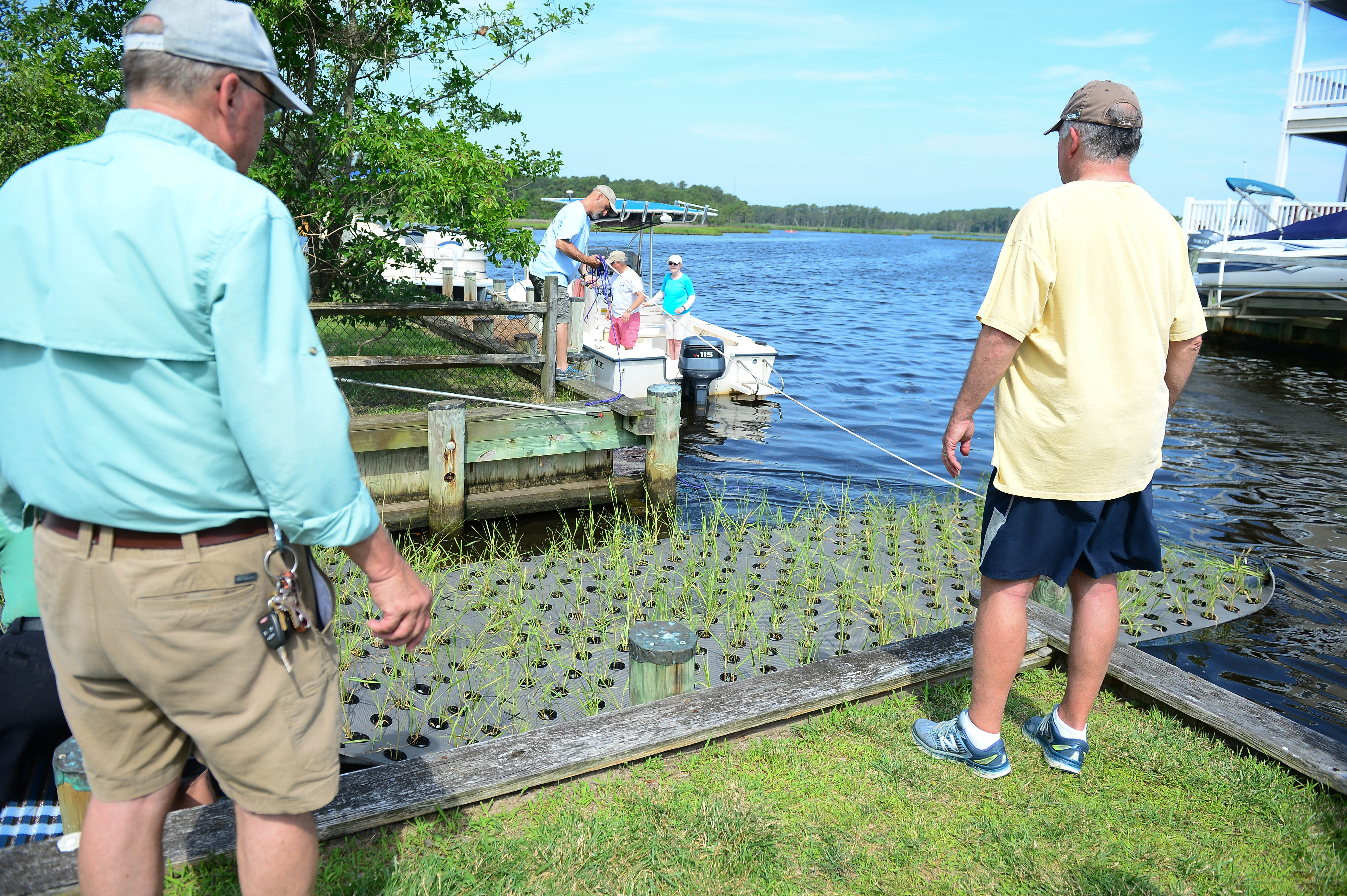 Small but mighty: Floating wetlands ready to battle pollution in South Bethany canals
