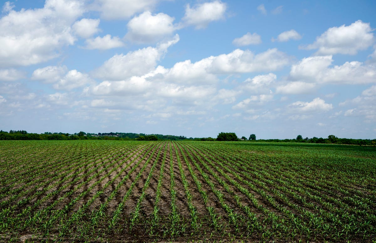 House passes farm bill that includes controversial work