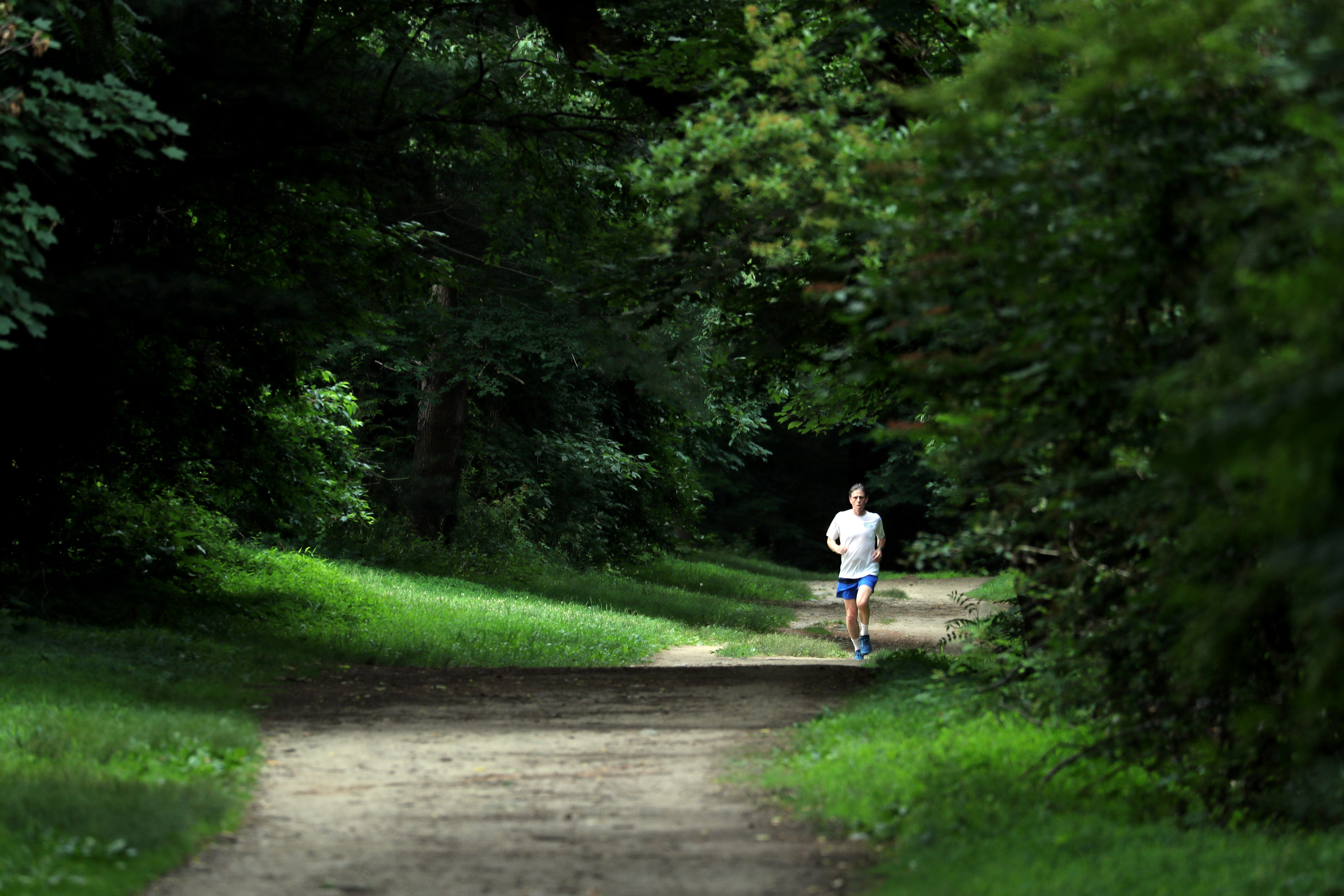 Video: A walk through history on the Old Croton Aqueduct Trail