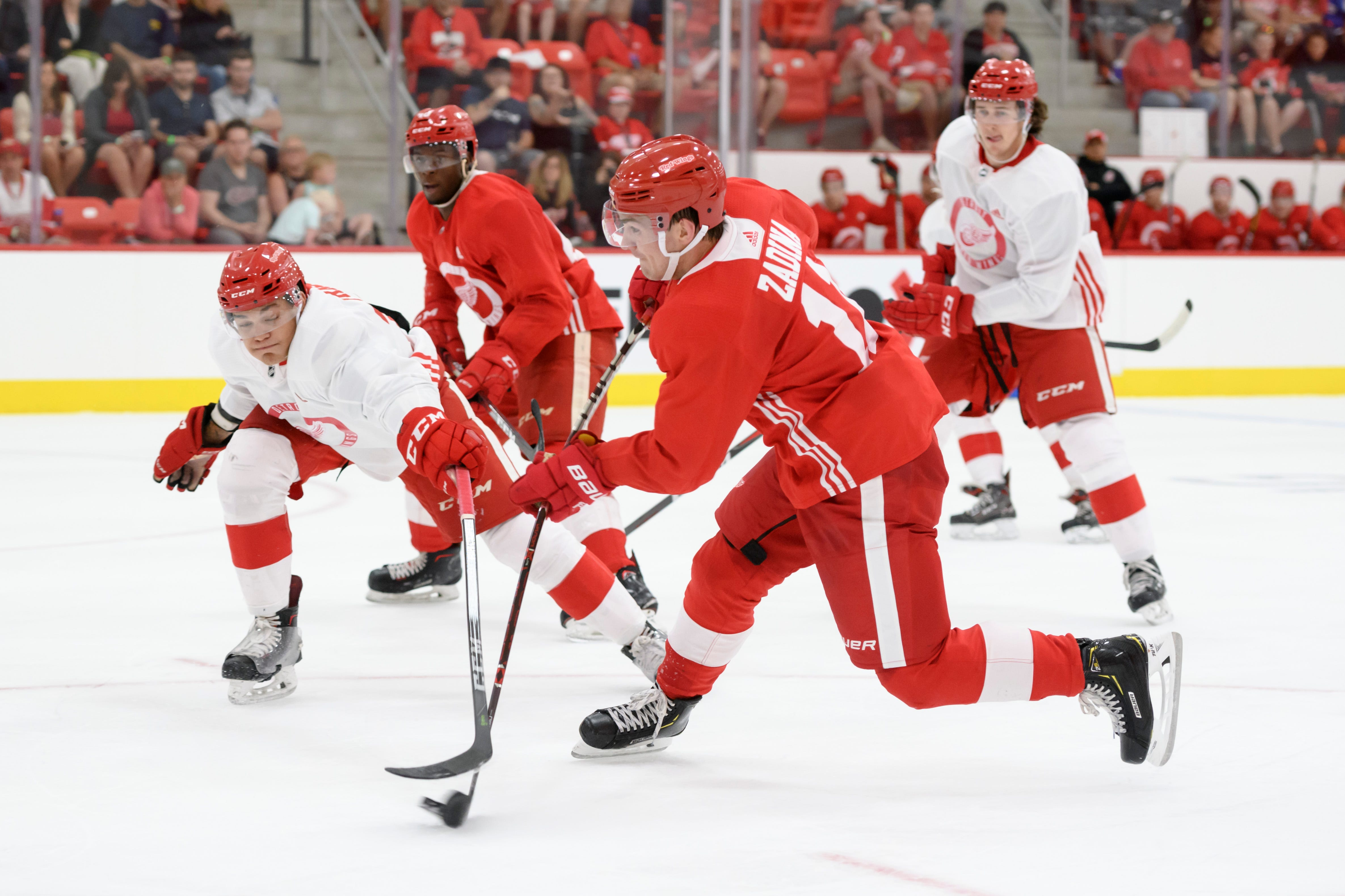 http://www detroitnews com/picture-gallery/sports/nhl/red-wings/2018