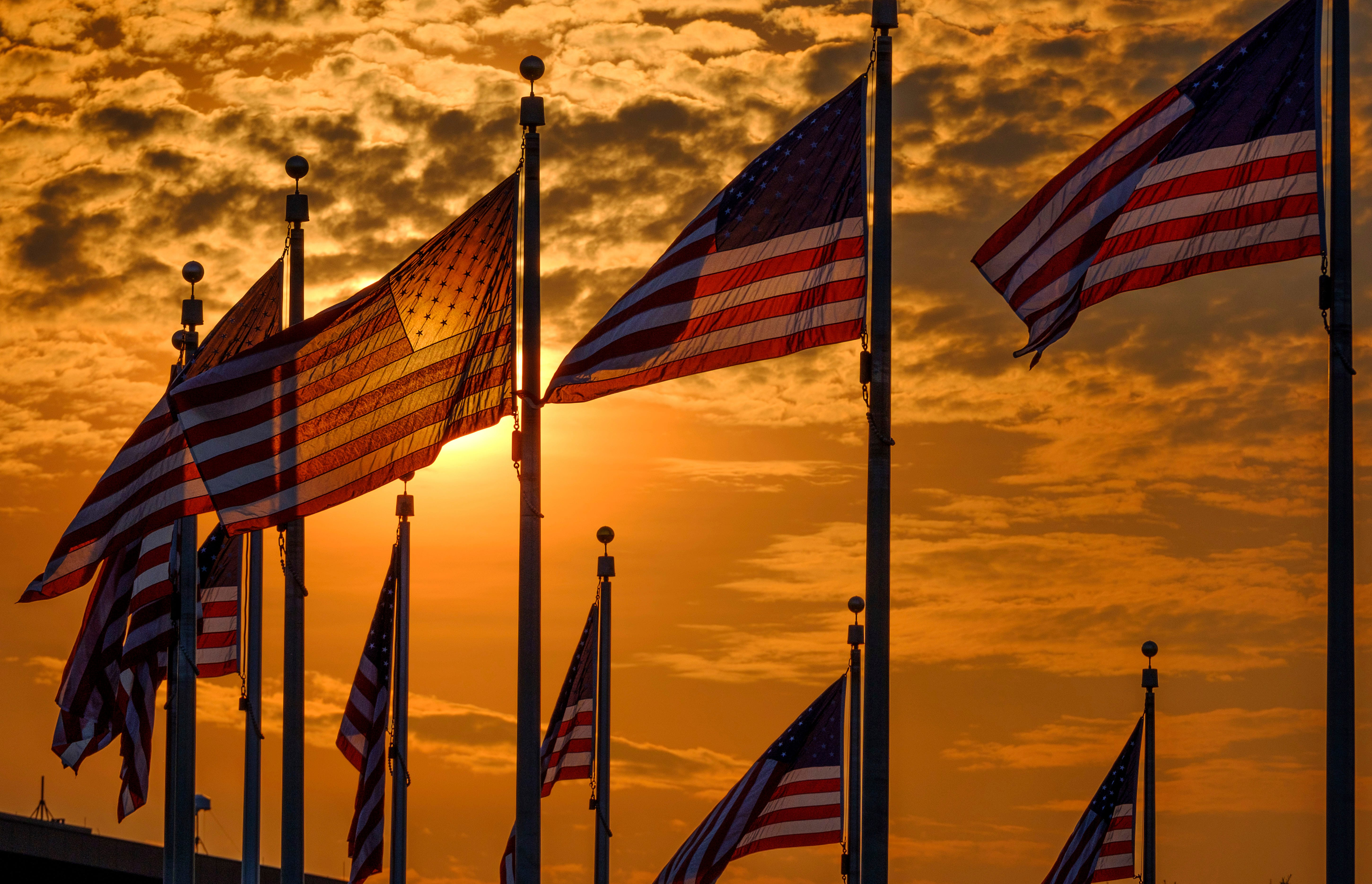 U.S. flags surrounding the Washington Monument are backlit by the rising sun on Independence Day in Washington.