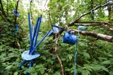 The forest and tree debate is real. He makes art out of discarded materials, and for two years has thoughtfully and carefully placed about 20,000 pieces along pathways in the woods on his property. The township says it's junk. He says it's an art installation.  They want it gone.