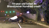 A single-vehicle crash Monday morning in Brandywine Hundred killed a 19-year-old Pennsylvania man.  7/16/18