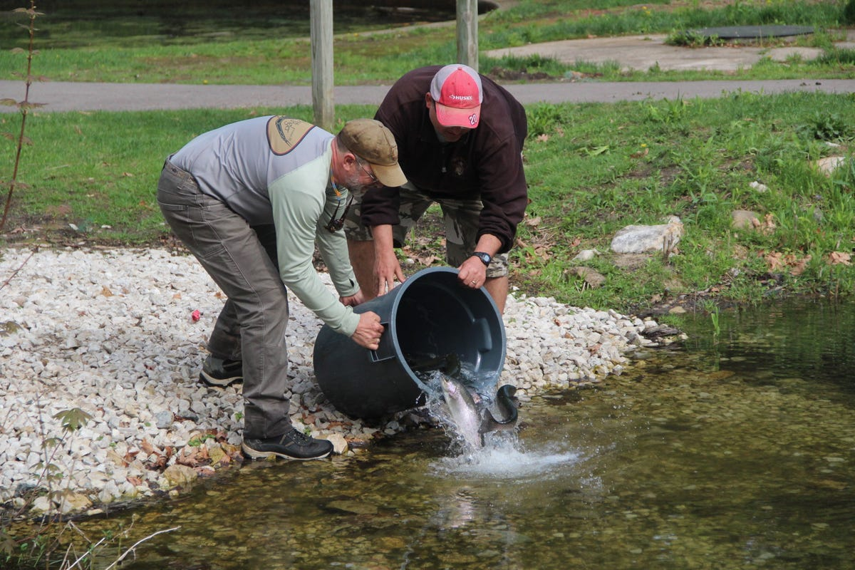 Trout Unlimited chapter helps improve Paradise Springs