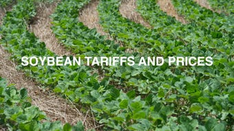 Jay Baxter, a farm manager at Baxter Farms, talks about the recent soybean tariffs and price changes.
