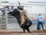 Professional bull riders attempt to stay on a bucking bull for eight seconds.