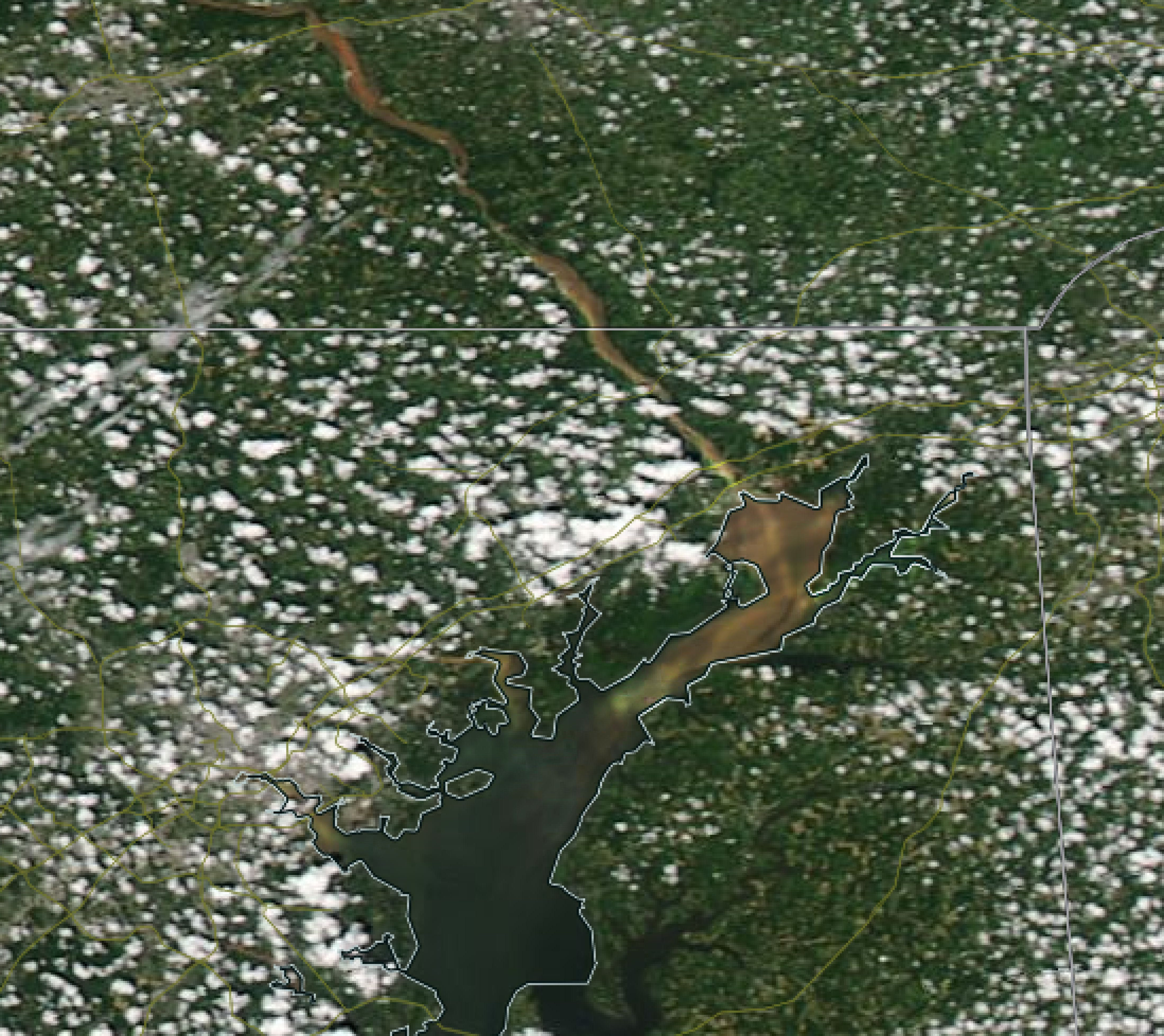 This satellite image of the Susquehanna River shows debris and sediment flowing into the Chesapeake Bay after a massive storm.