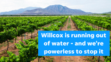Lax groundwater rules in Arizona's rural areas are pumping communities like Willcox dry, columnist Joanna Allhands says.