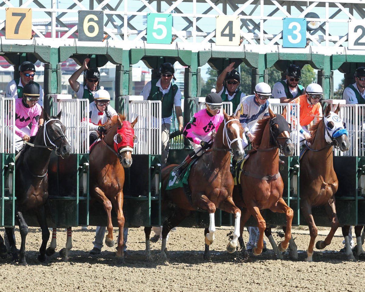 Mike Battaglia's free picks for Wednesday at Churchill Downs