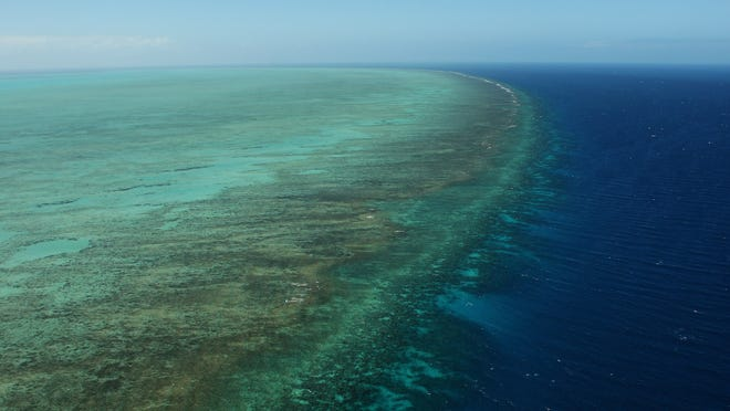 26. Coral extinction   Coral reef death will likely get much worse. The IPCC estimates that average surface temperature reaching the 1.5°C mark will lead to a 70% to 90% loss of coral reefs in the coming years.