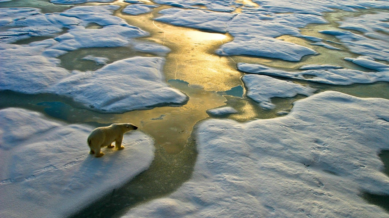 Almost all of the oldest, thickest ice in the Arctic Ocean is gone due to climate change