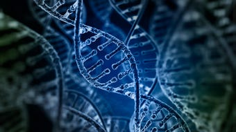 Thanks to an arrest in the decades-old Golden State Killer case aided by public DNA databases, more law enforcement agencies are using DNA databases.