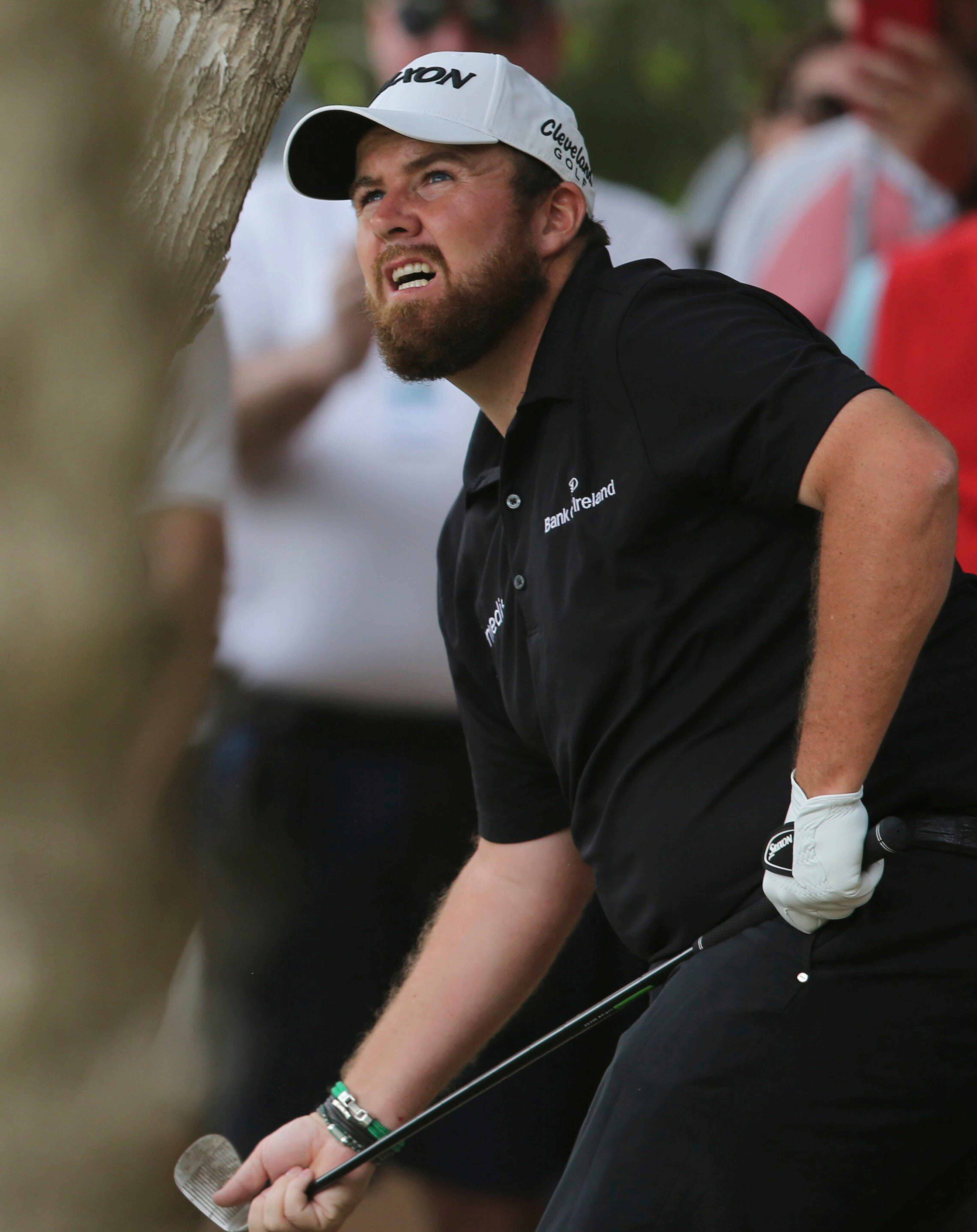 Lowry resists Sterne's challenge in Abu Dhabi for 1-shot win