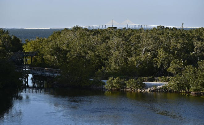 A proposal on Manatee County's 2020 ballot would increase property taxes to save preserves and parks.
