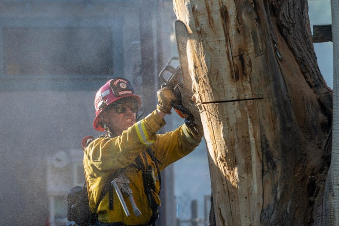 A Victorville Fire Department captain saws into a smoldering tree during a wildfire in Old Town Victorville on Thursday, June 4, 2020.