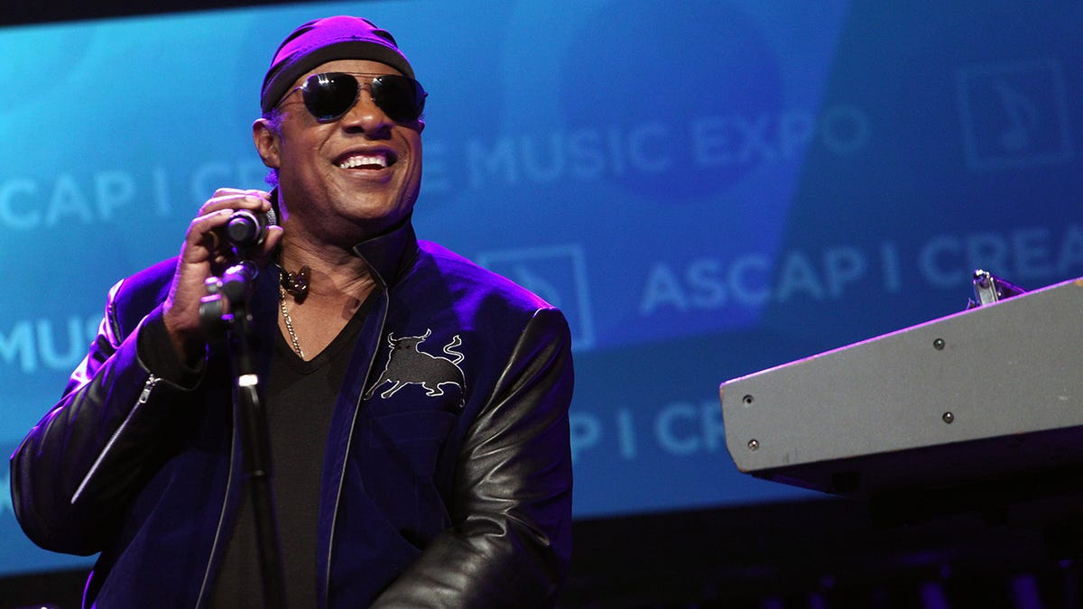 Stevie Wonder asks Biden for 'Truth Commission' to address inequality in open letter to MLK