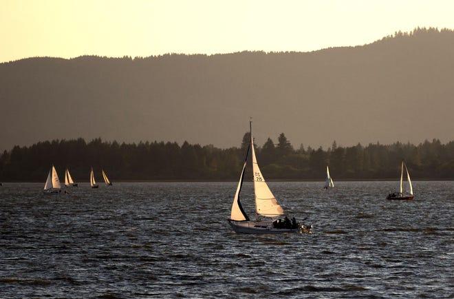 Sailboats ply the waters of Fern Ridge Lake.
