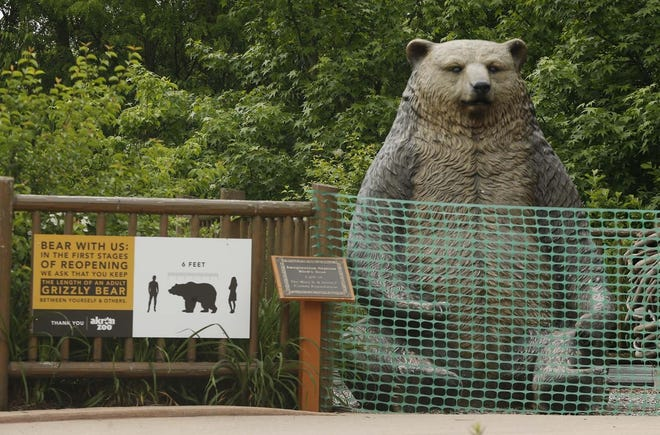 The grizzly bear photo op has been fenced off to the public as the Akron Zoo promotes social distancing with signage suggesting that guests stay a grizzly bear's length apart.