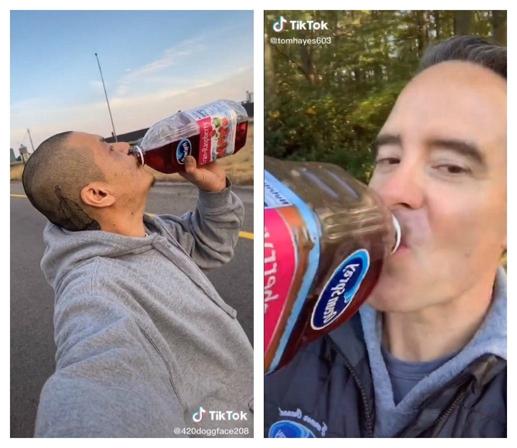 Ocean Spray challenge on TikTok is good news for top cranberry producing state Wisconsin