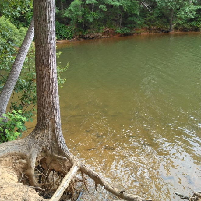 What the waters at Moss Lake should look like, but over the last month an algae bloom has been spotted in the lake.