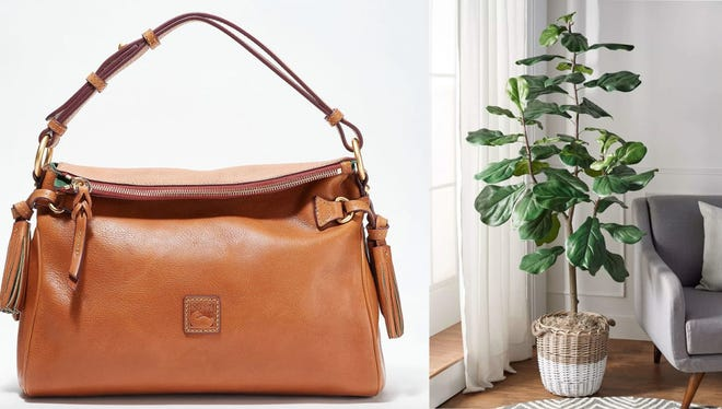 Discover products from your favorite brands at QVC.
