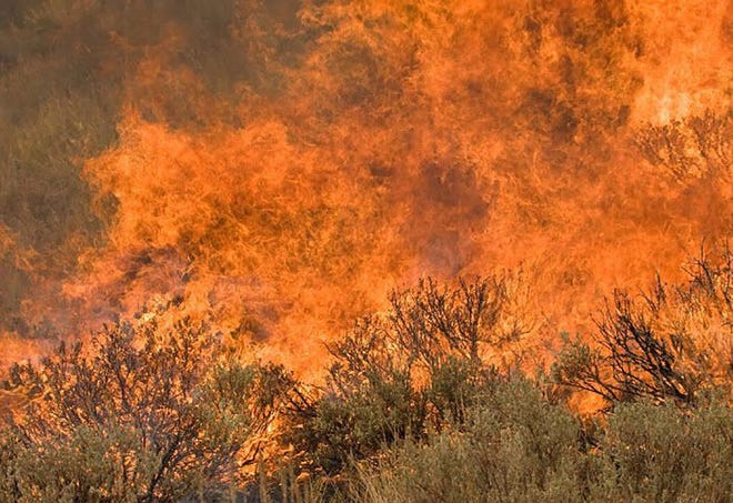 A new study reveals Texas and other Western states may be at risk of damaging wildfires this season.