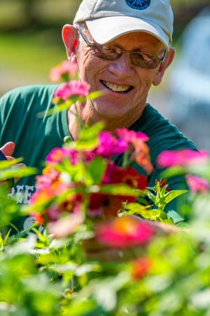 Mike Short cuts flowers in his plot at the Willie Streeter Community Gardens Wednesday, September 9, 2020. (Rich Janzaruk / Herald Times)