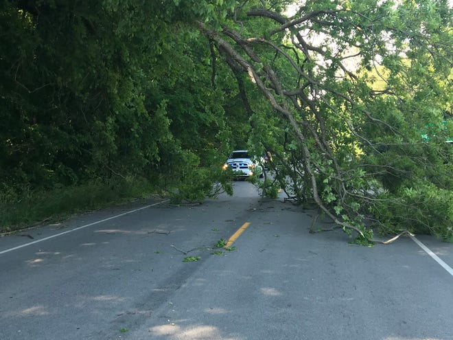 LEFT: The Spencer Street Department was called out to a tree down on US 231 North / N. Fletcher Avenue, near James Drive. The Owen County Highway Department, as well as the Indiana Department of Transportation (INDOT) helped to get the road open, which was closed for over an hour while the tree limb was removed. Also assisting in traffic control and removal was the Spencer Police Department, Owen County Sheriff's Department and Owen Valley Fire Department. (Submitted / Spencer Evening World)