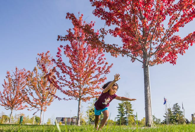 Lucy Miller, 7, practices cartwheels near a line of colorful trees on Monday, Sept. 21, 2020, at Howard Park in South Bend.