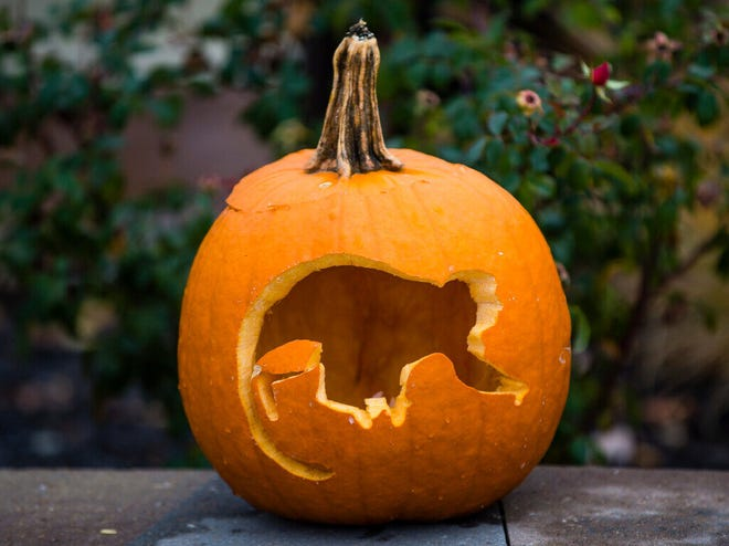 Festive decorations were part of Zoo Boo at Potawatomi Zoo in South Bend.