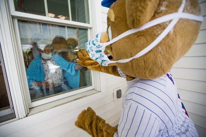 Besty Jochum puts her hand up to the window with South Bend Cubs mascot Stu to celebrate her 100th birthday Monday, Feb. 8, 2021 at Southfield Village in South Bend.