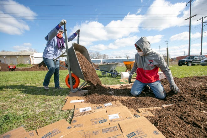 Linda Raven dumps a wheelbarrow full of mulch onto cardboard as Mitch Yaciw spreads it. Cultivate is partnering with Unity Gardens to establish a garden in the community. That garden will be used by the community as well as fill some the fresh food needs of cultivate.