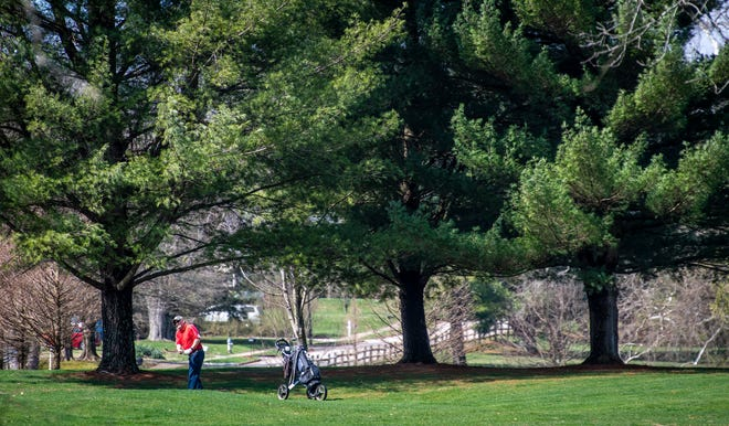 Steve Layman watches his approach shot Friday while playing at Cascades Golf Course. (Rich Janzaruk / Herald-Times)