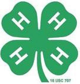 4H clover logo