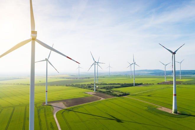 Wind farm in an open field.
