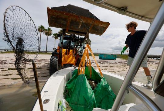 Salvatore Cuccia, 21, dari Clearwater, menunggu saat pemuat depan mengambil sekantong ikan mati Kamis di Dunedin, Fla Pinellas County memiliki perahu kecil yang mengambil ikan mati di Dunedin dan sekitar Pelabuhan Clearwater pada hari Kamis. Pembunuhan ikan dikaitkan dengan mekarnya Red Tide baru-baru ini.