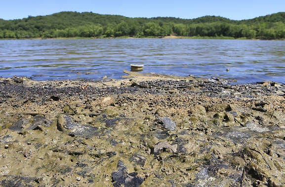 Algae and mud are exposed in 2012 as Lake Monroe recedes near the Pine Grove boat ramp.