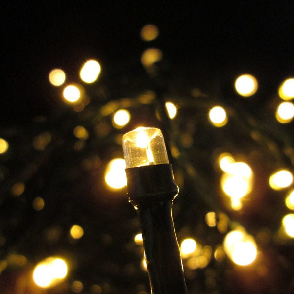 Voyageur Park in De Pere will be decorated with holiday lights this year.